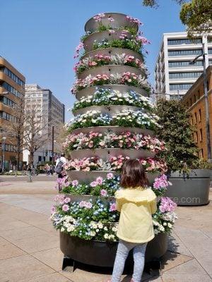 花のタワー