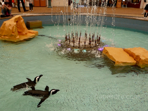 噴水のペンギン