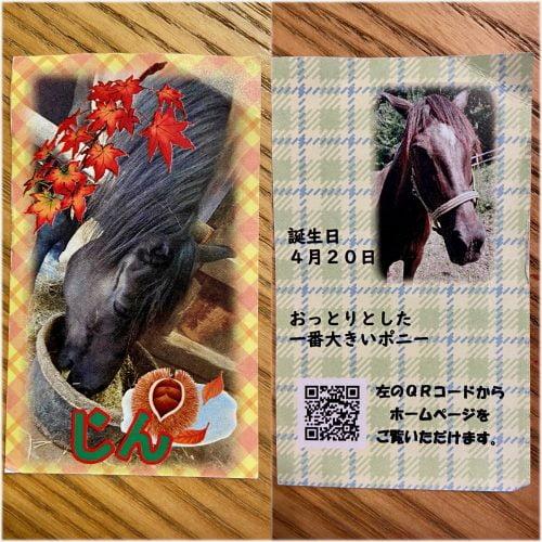 ポニーのオリジナルカード